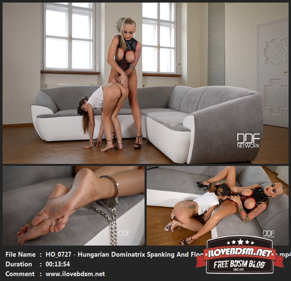 HO0727_-_Hungarian_Dominatrix_Spanking_And_Flogging_Russian_Submissive.jpg