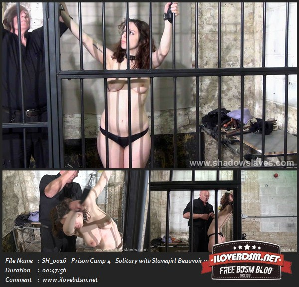SH0016_-_Prison_Camp_4_-_Solitary_with_Slavegirl_Beauvoir.jpg